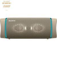 Sony Srsxb33c Enceinte Bluetooth - Autonomie 24h - Splash Proof - Gris