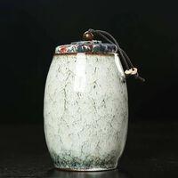 Glaçage de glace urnes de crémation souvenir funéraire animal de