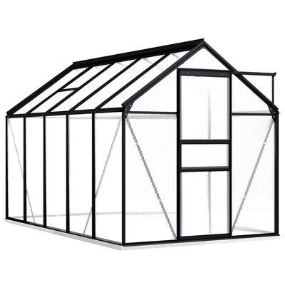 vidaXL Serre avec cadre de base Anthracite Aluminium 5,89 m²