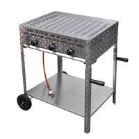 vidaXL Grill commercial à gaz 3 zones de cuisson et base Inox Argenté