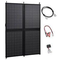 vidaXL Chargeur de panneau solaire pliable 100 W 12 V