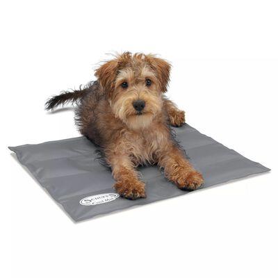 Scruffs & Tramps Tapis refroidissant pour chiens Gris Taille S 2716