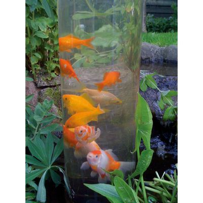 Ubbink Tour à poisson 50 cm Acrylique