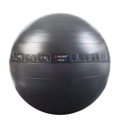 Pure2Improve Ballon d'exercice 75 cm Noir