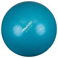 Avento Ballon de fitness/d'exercice Diamètre 55 cm Bleu