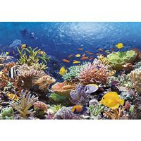 Puzzle 1000 pièces - Récif de corail